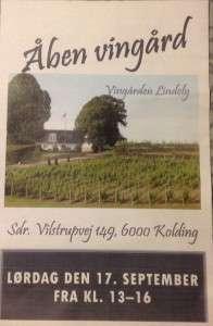 Åben vingård